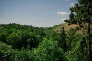 Výhled do Prokopského údolí